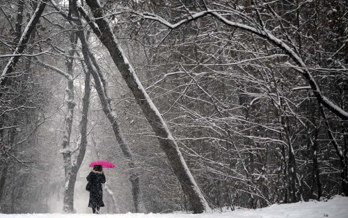 TOPSHOTS A woman walks with an umbrella during a heavy snow fall in Sofia on December 22, 2011. AFP PHOTO / NIKOLAY DOYCHINOV (Photo credit should read NIKOLAY DOYCHINOV/AFP/Getty Images)